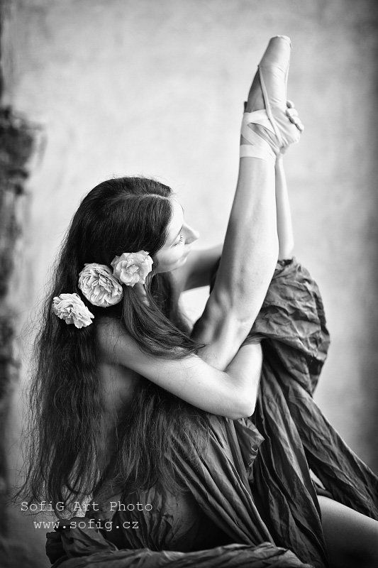 ballet, balet, tanec, dance, sofig ...photo preview