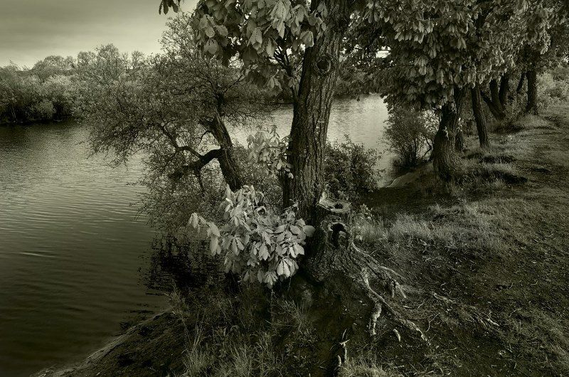 у реки....photo preview