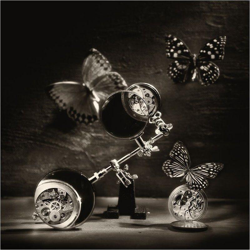 Среди бабочек и механизмовphoto preview