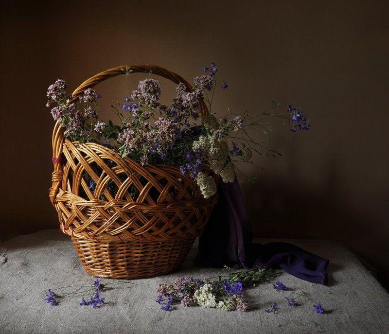 лето, июнь, душица, бессмертник, тысячелистник полевых цветов корзинаphoto preview