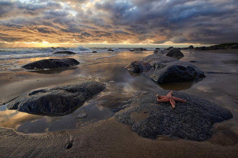 белое, море, север Доброе утроphoto preview