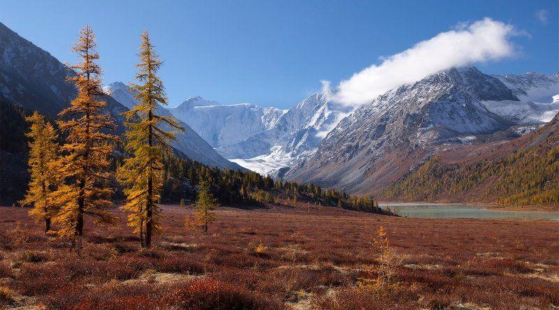 алтай, горный алтай, горы, пейзаж, осень Осень в горахphoto preview