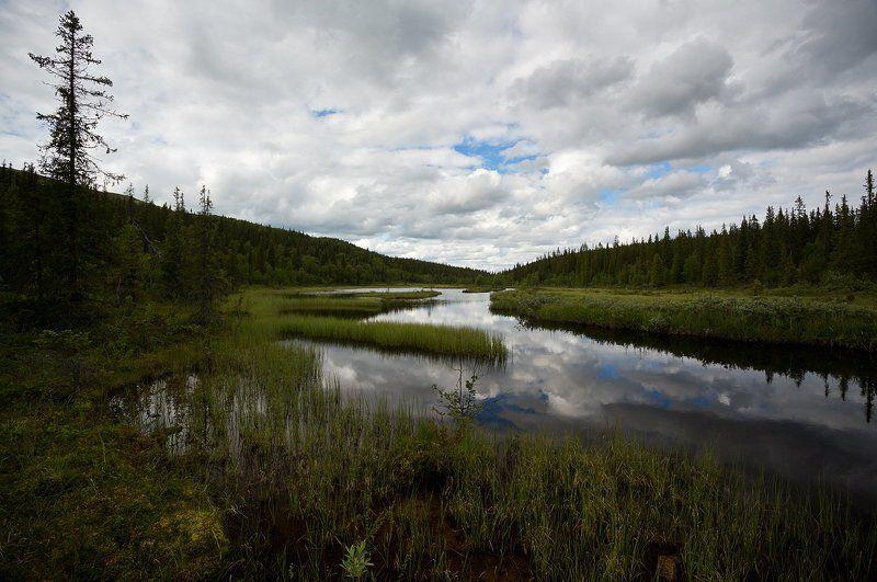 кольский, полуостров, лето, речка, хариусная Тихий омутphoto preview