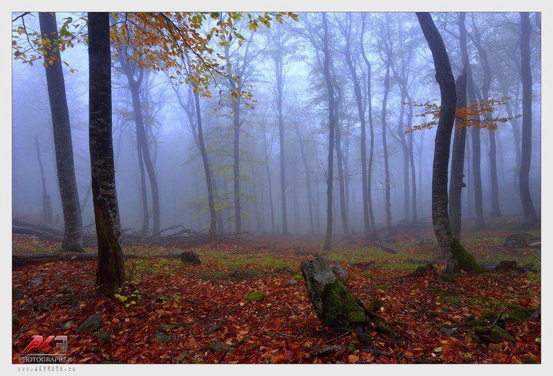 гора, бештау, кмв, осень, пятигорск Бештау в туманеphoto preview