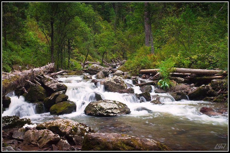 третья речка телецкое озеро Третья речкаphoto preview