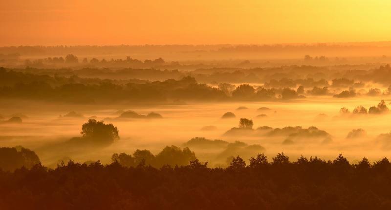 утро цвета осени...photo preview