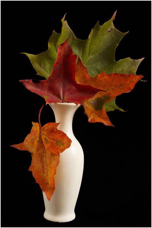 Осенний букетphoto preview