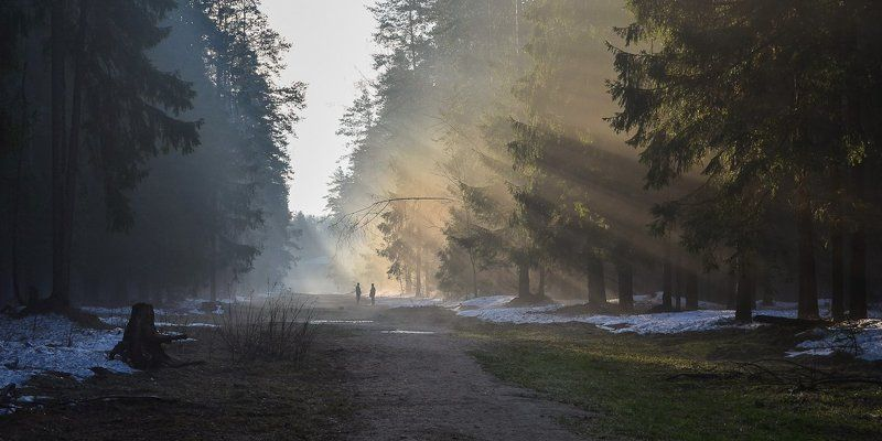 Туманный диалогphoto preview