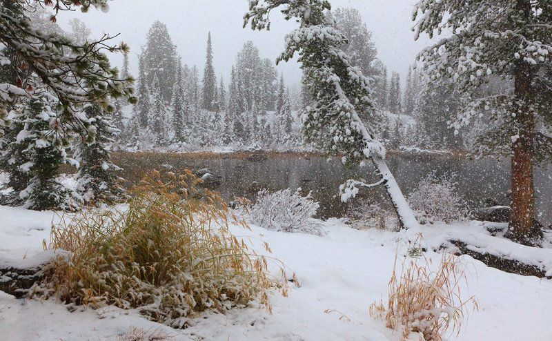 Сибирский сентябрьphoto preview