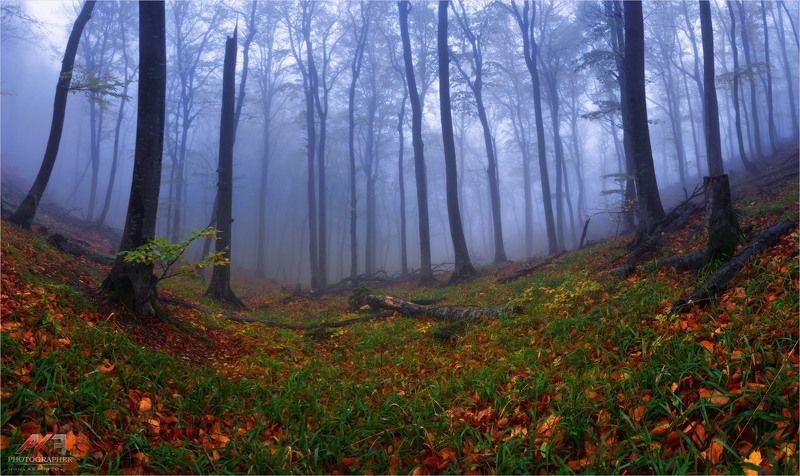 осень, кмв, пятигорск, гора, бештау Осень на Кавказеphoto preview