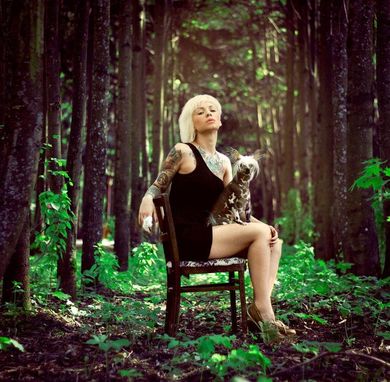 жанровый, портрет, портрет, тату, tattoo, животные, природа, лес, девушка photo preview