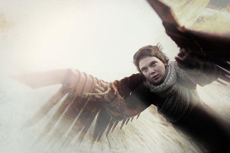 безумство, икар, крылья, мечты Жажда безумствphoto preview