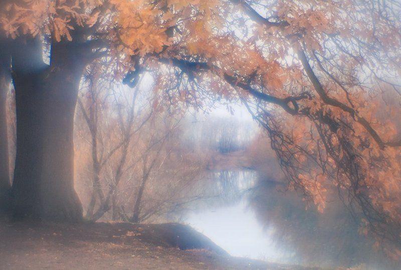 Ноябрьphoto preview