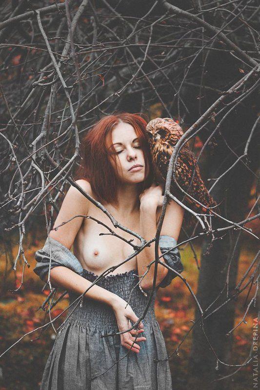 сова, ню, осень, деревья, ветви, рыжая девушка Owl Advicephoto preview