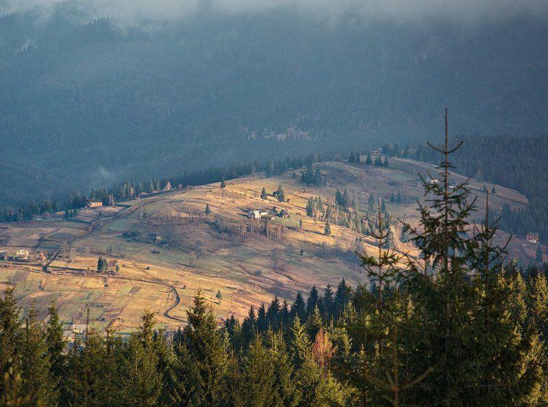 карпаты, осень, утро, свет ...Утренняя...photo preview