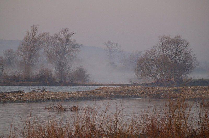 утро, весна, , туман \