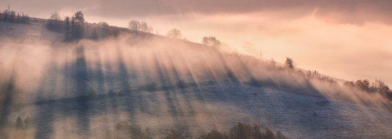 карпаты, осень, утро, свет, лес, туман ...Туманный рассвет...photo preview