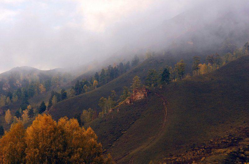 Осеннее грустное: в ожидании зимы, вспоминая лето...photo preview