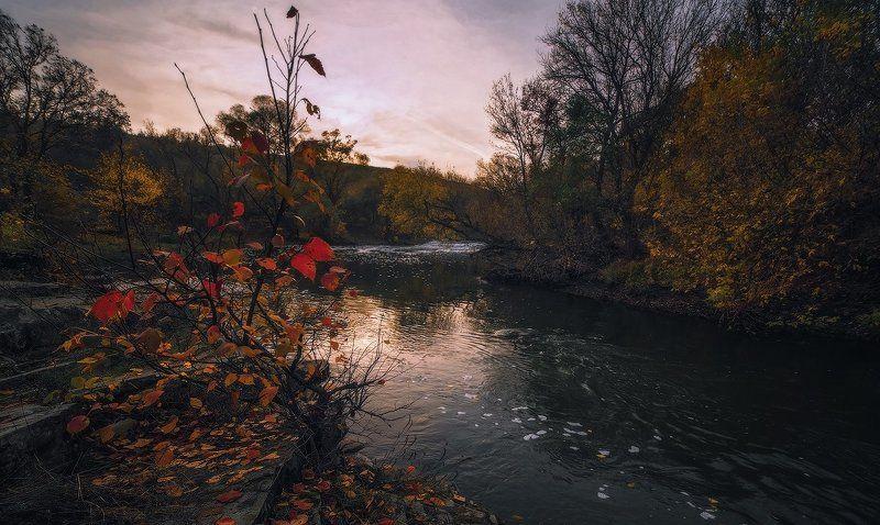 Поздняя осеньphoto preview