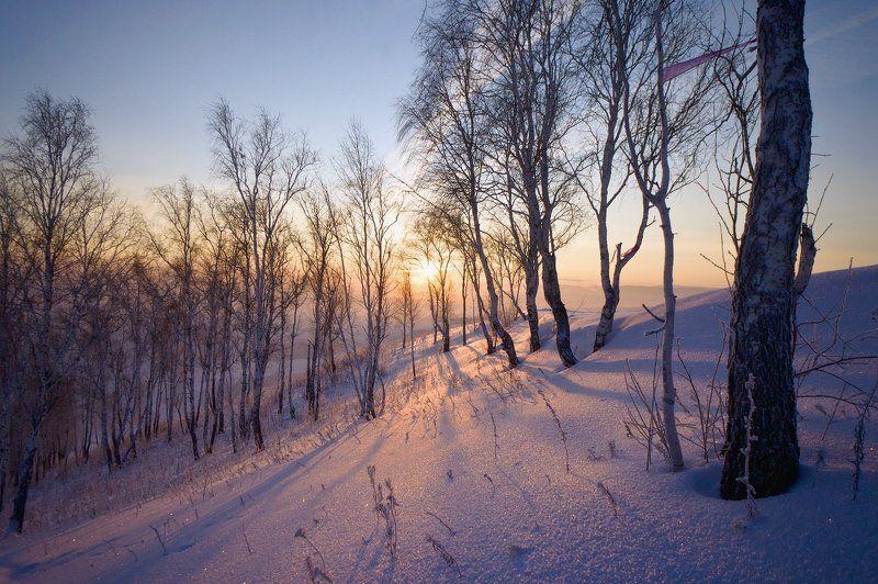 снег, мороз, солнце, зима Свет солнца золотогоphoto preview