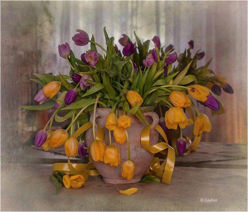 foto liubos, натюрморт, тюльпаны Тюльпановый экспромтphoto preview