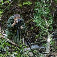 Portrait of a photographer (avatar) Роман (Roman Dmitriev)