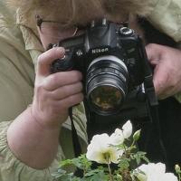 Portrait of a photographer (avatar) Valentina