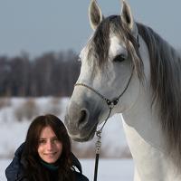 Portrait of a photographer (avatar) Alla