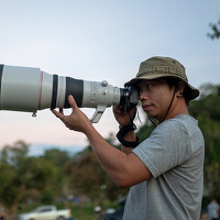 Portrait of a photographer (avatar) SUTIPORN SOMNAM (Sutiporn Somnam)