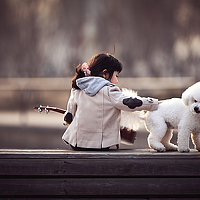 Portrait of a photographer (avatar) 王猛