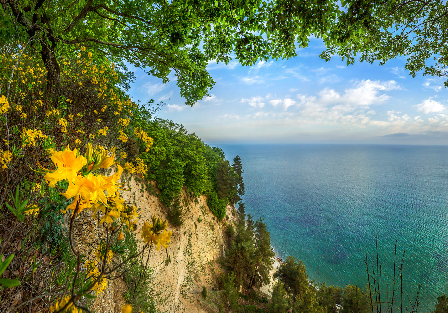 Картинки море крым абхазия, открытки сова прикол