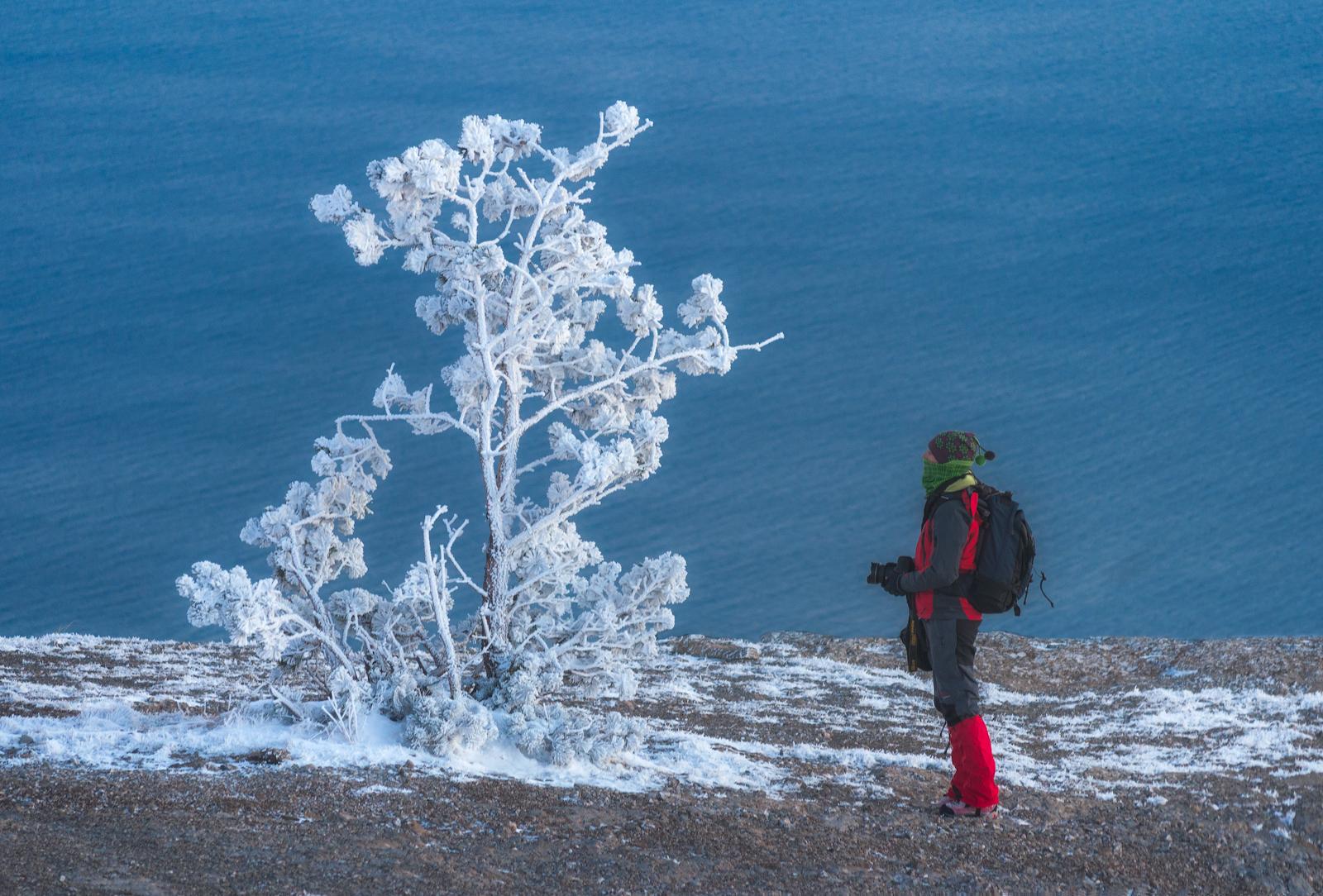 зима в крыму прикольные картинки когда бегу тренировку