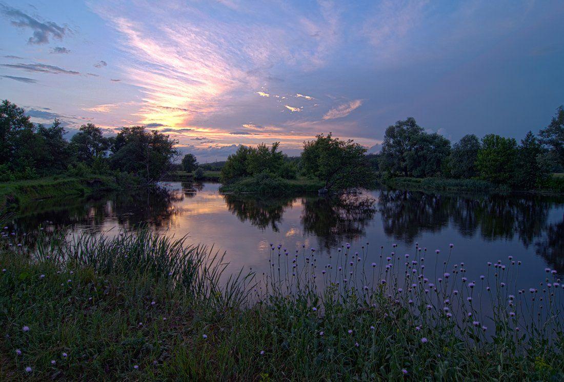 речка , закат солнца , цветы, sa56