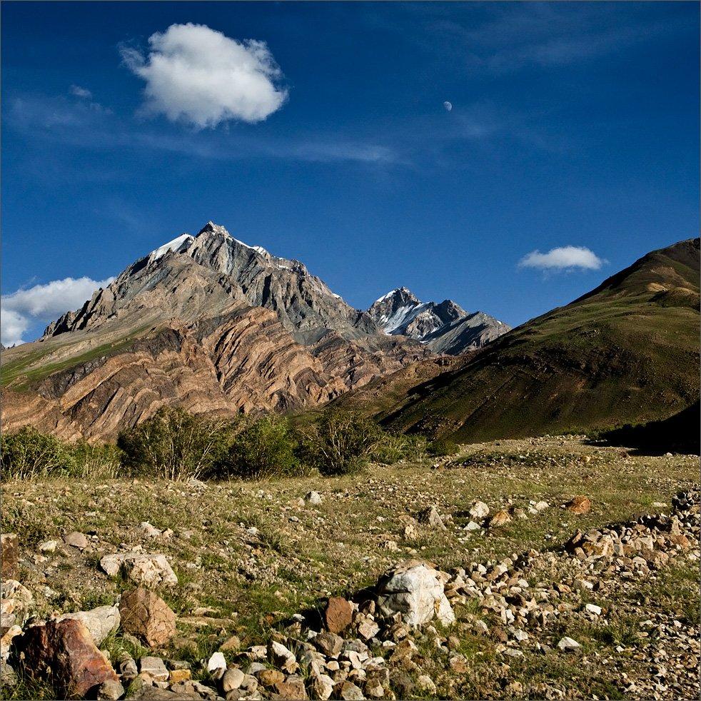 Гималаи, Нетушки