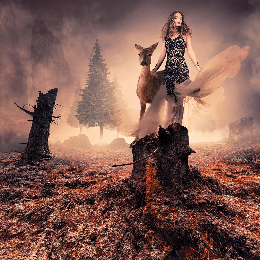 aurochs, camel, clouds, corn, giraffe, girl, ground, head, heat, ioana, lake, light, manipulation, mounting, mounting happy, orange, psd, reflection, sky, spinner, stage, sunset, tutorials, water, wheel, Caras Ionut