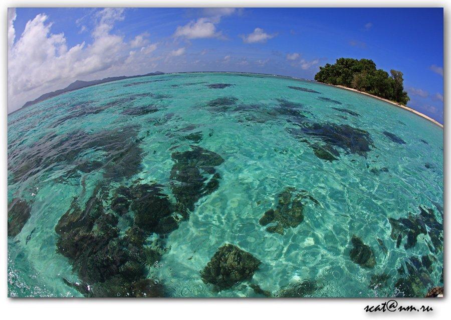papua new guinea, round world, disert island, ocean, рифы, reef, папуа, Андрей (SCAT)