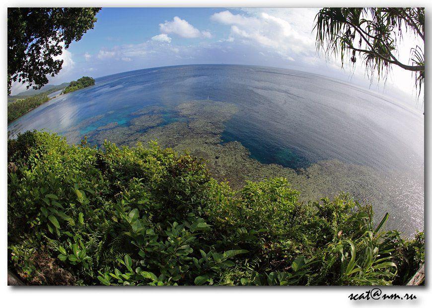 papua new guinea, round world, ocean, рифы, reef, папуа, Андрей (SCAT)