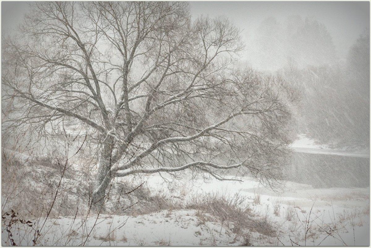 зима, зима пришла, метель, природа  времена года, снег идет, Лидия Киприч