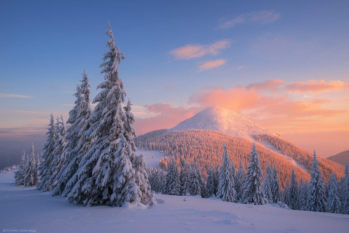 Горы, Зима, Карпаты, Хомьяк, Александр Котенко