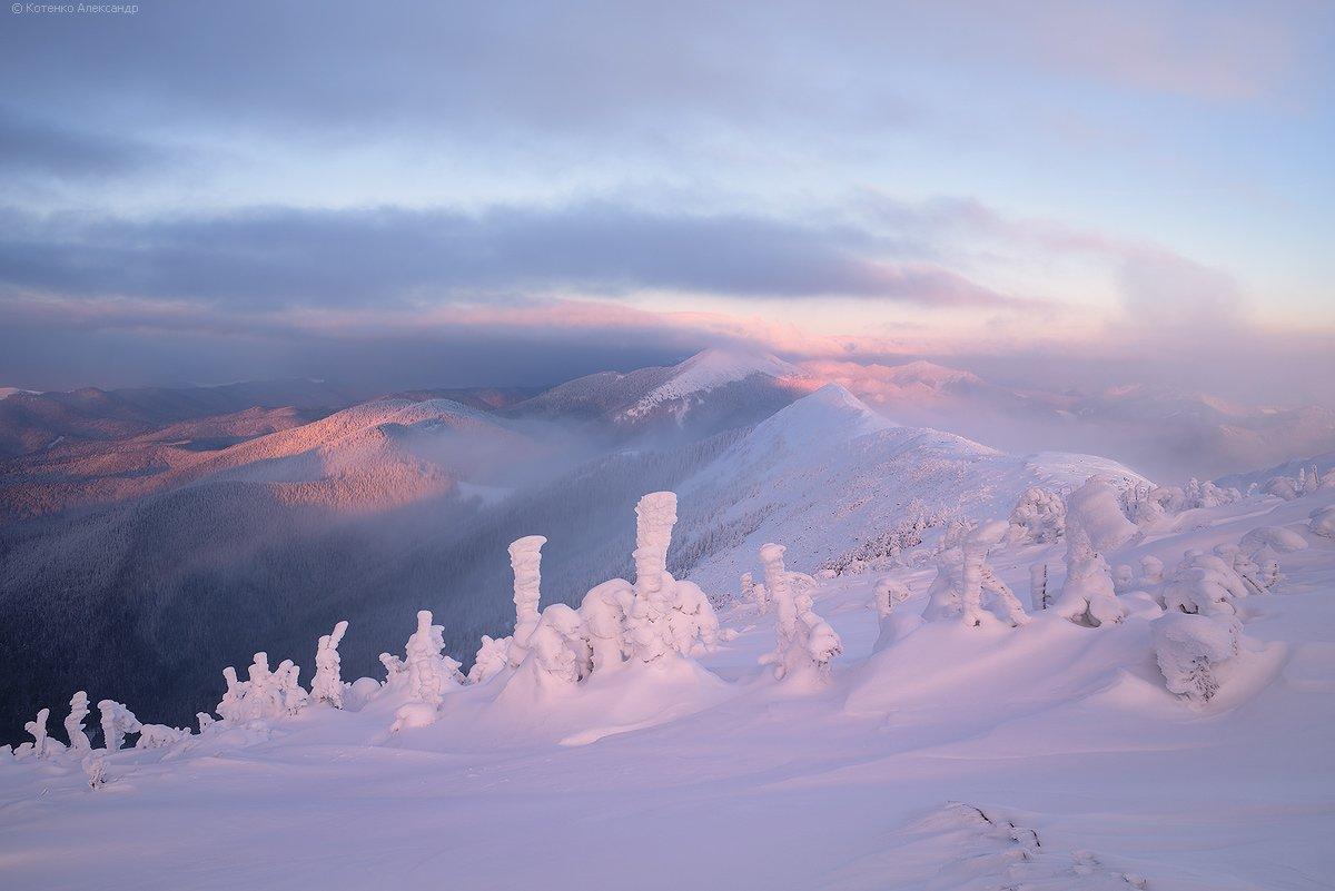 Горганы, Горы, Зима, Карпаты, Александр Котенко