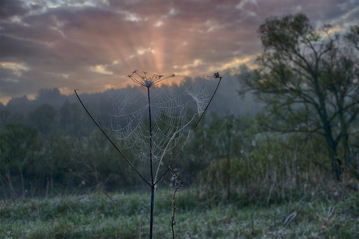 Весна, Май, Небо, Ока, Природа, Рассвет, Река, Россия, Тульская область, Утро, Денис Щербак
