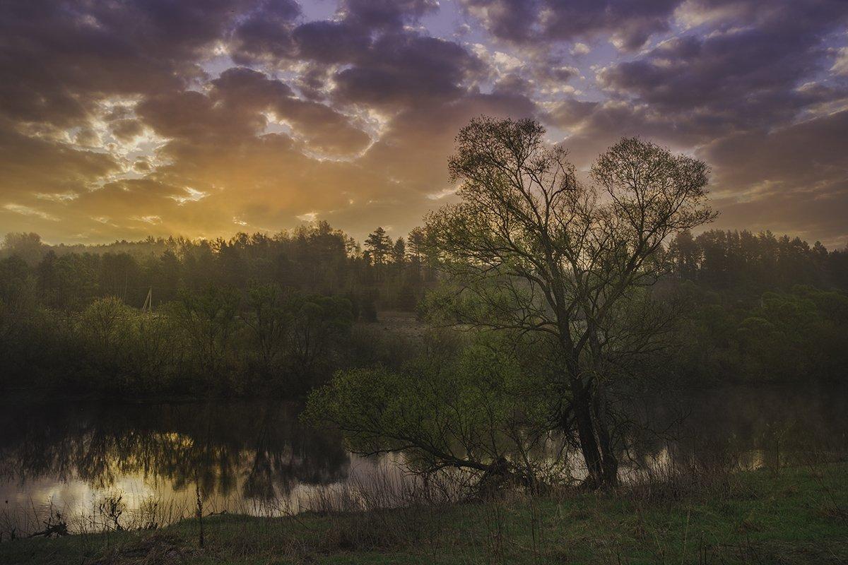 Весна, Небо, Ока, Пейзаж, Природа, Рассвет, Река, Россия, Тульская область, Утро, Денис Щербак