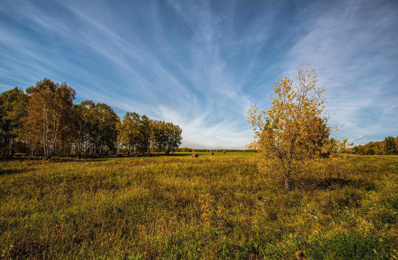 осень, небо, GunterV