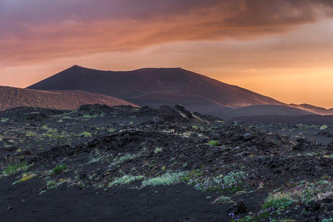 закат,камчатка,вулканы,вечер, Слащилина Нина