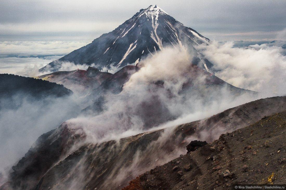 вулкан,Авачинский,Камчатка,дым,вершина,пар,извержение, Слащилина Нина