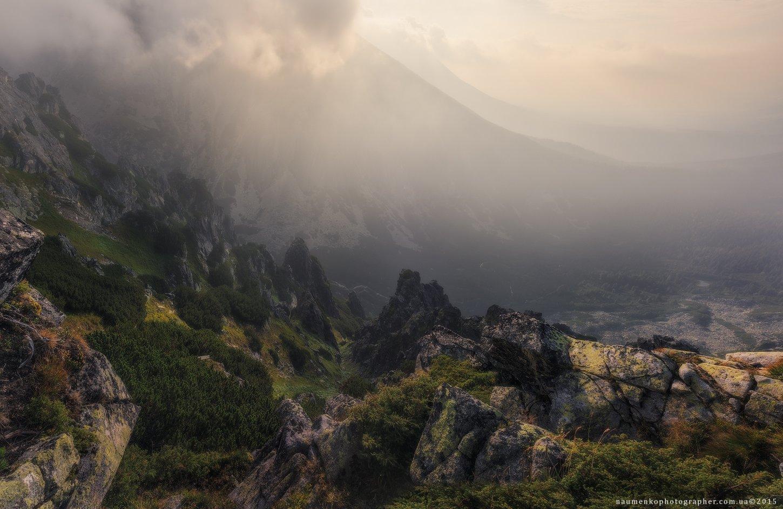 словакия, низкие, татры, туман, природа, горы, пейзаж, белый, лес, климат, туман, фон, синий, дерево, облако, красивый, горы, облака, живописные, высокие, трава, сцена, осень, погода, сосна, туманное, утро, зеленый, вершина, горный хребет, Александр Науменко