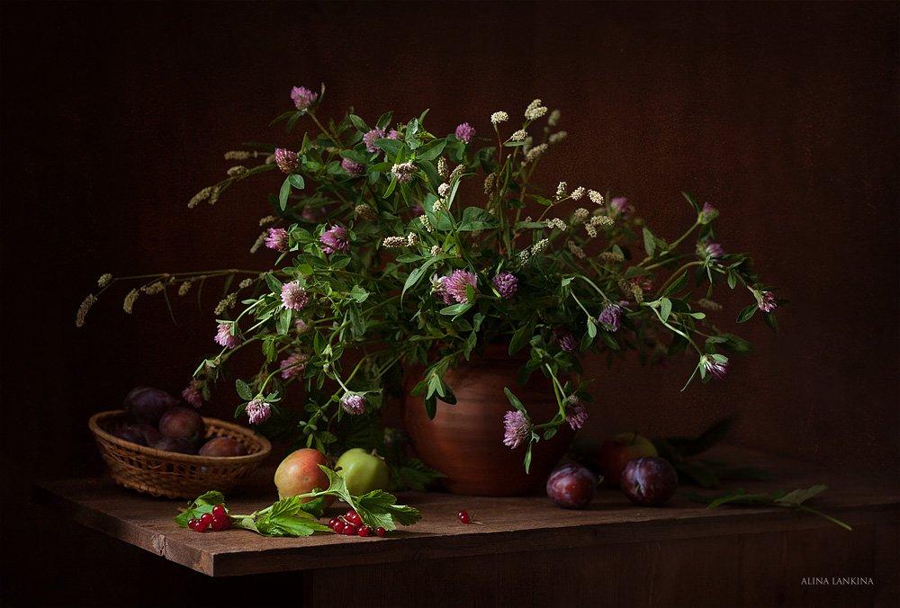 натюрморт, фотонатюрморт, цветы, полевые цветы, фрукты, яблоки, сливы, смородина, Алина Ланкина