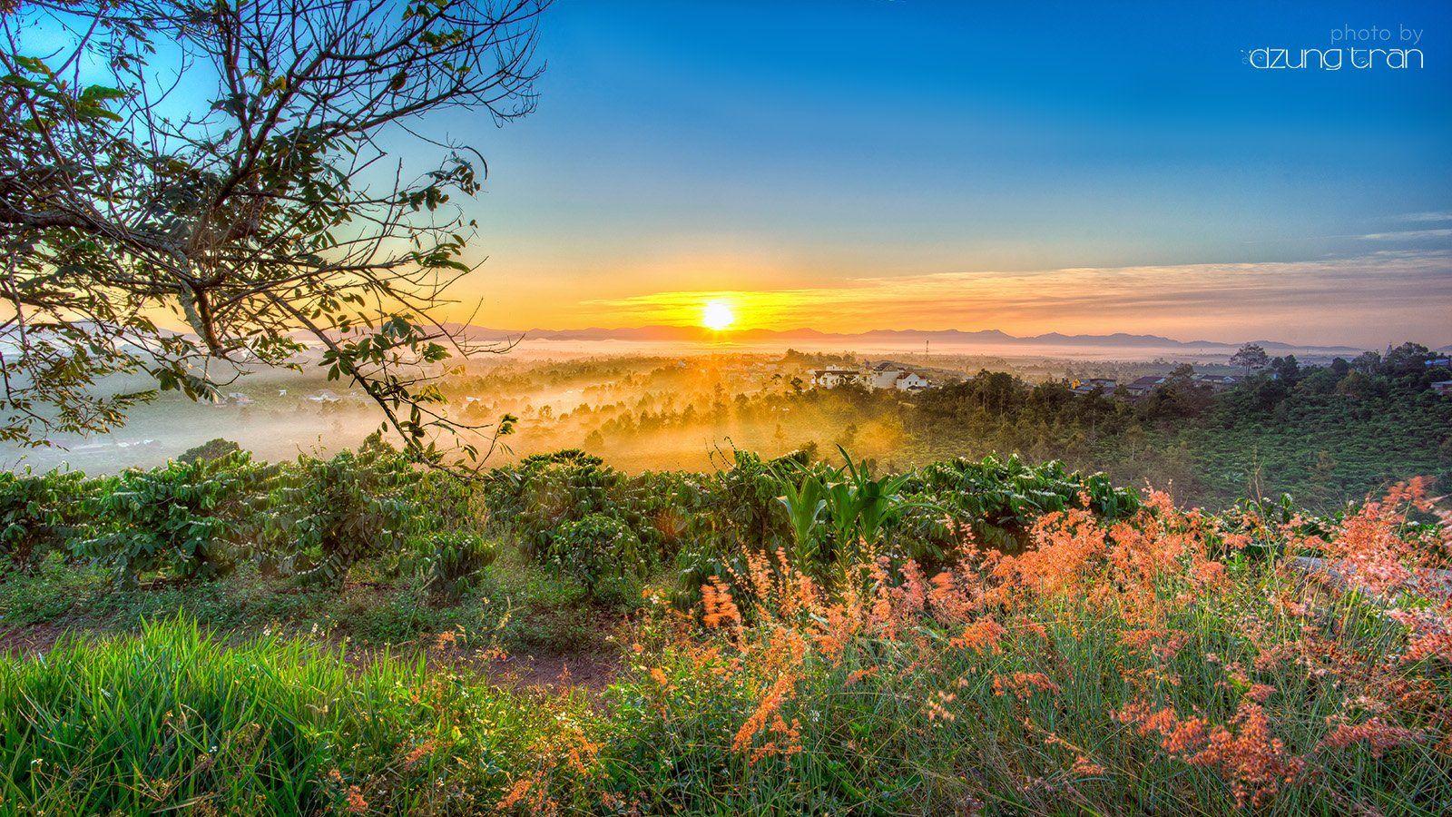 sunrise,baoloc,vietnam,grass, Tran Minh Dung