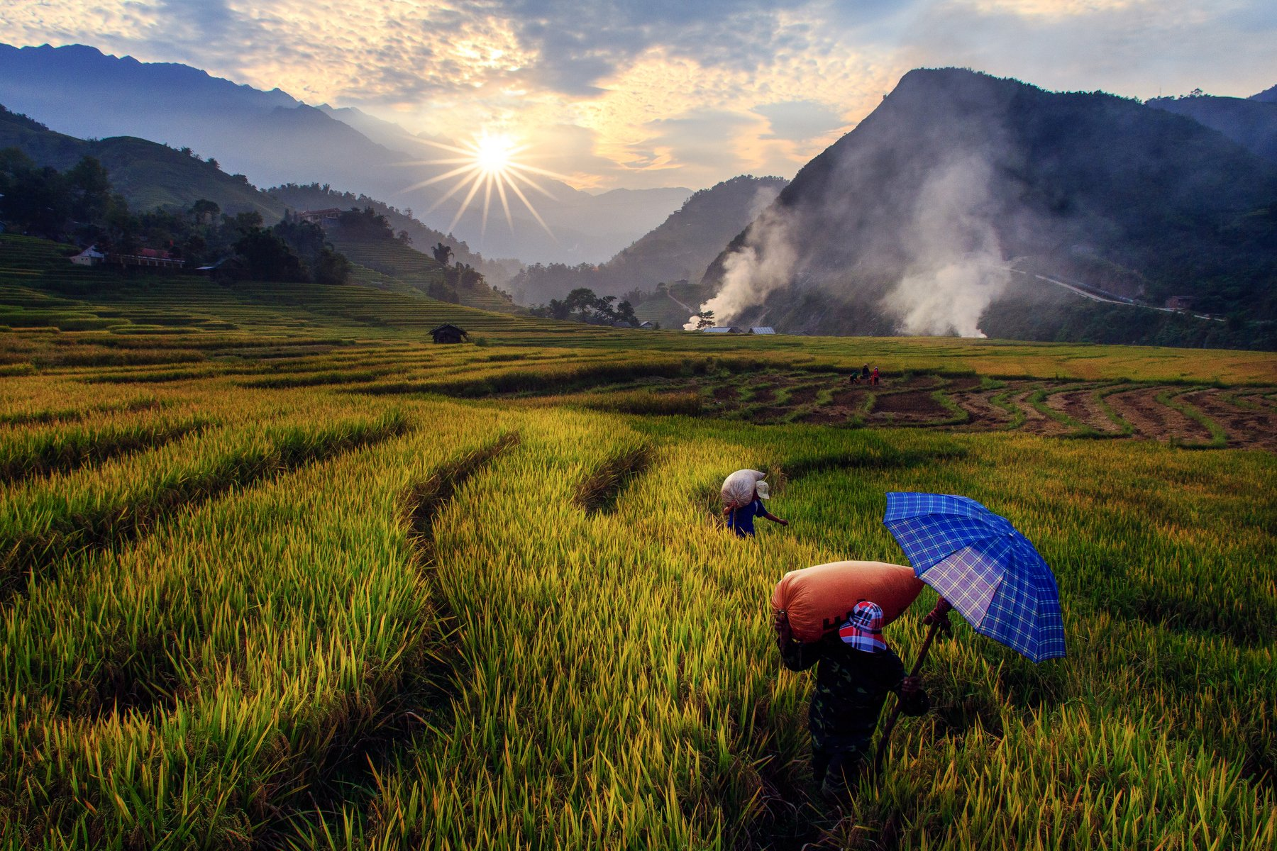 viet nam, Tuấn Nguyễn