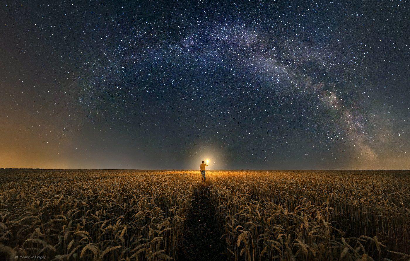 звезды, млечный путь, поле, Полюшко Сергей